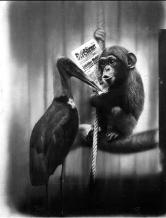 John Heartfield  Dialogue in the Berlin Zoo
