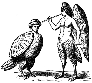 harpies from Bulfinch's The Age of Fable