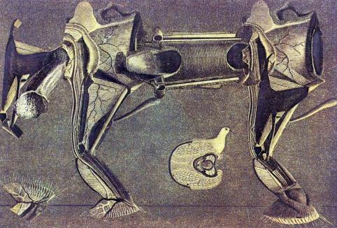 Max Ernst. A Little Sick Horse's Leg. 1920.